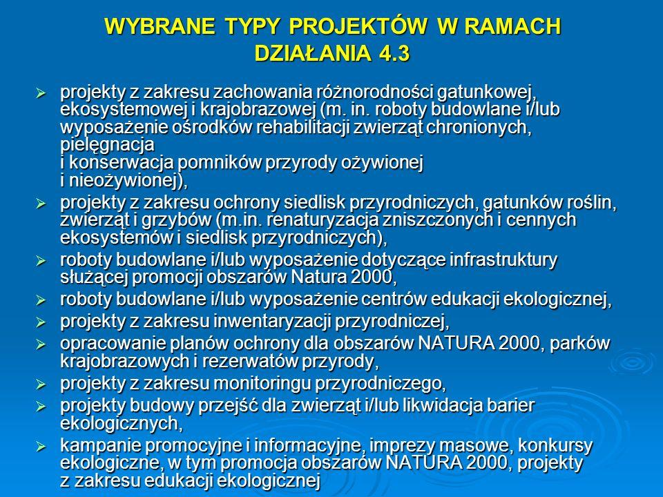 WYBRANE TYPY PROJEKTÓW W RAMACH DZIAŁANIA 4.3