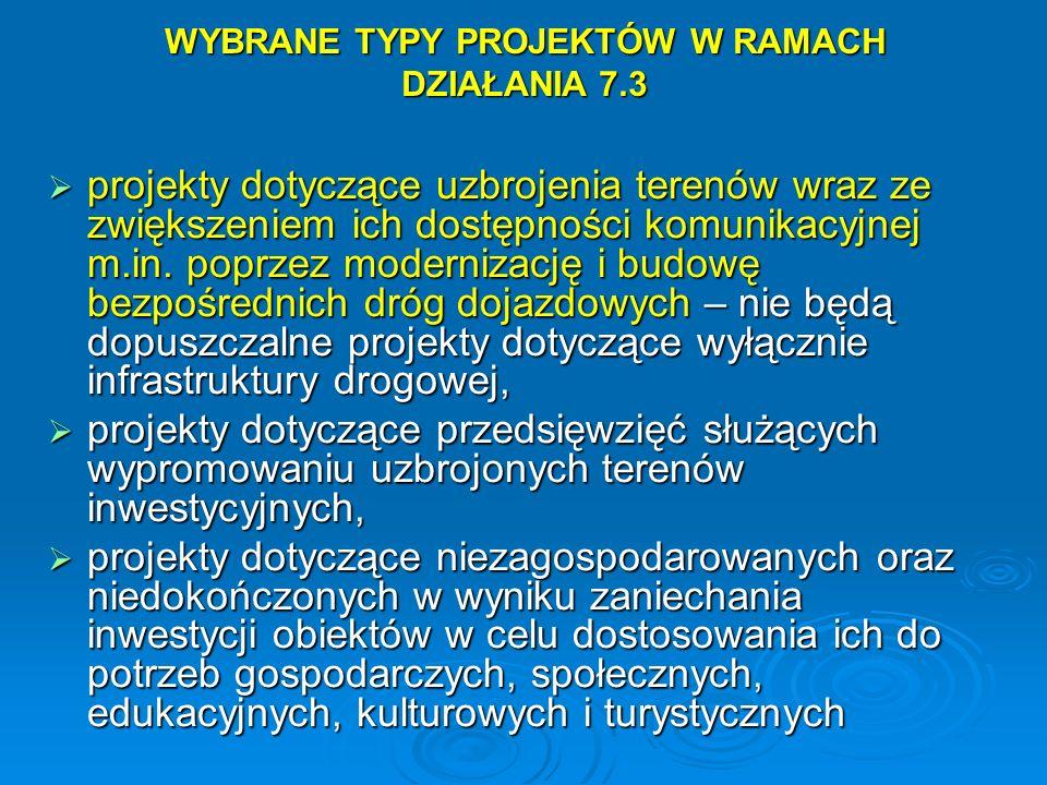 WYBRANE TYPY PROJEKTÓW W RAMACH DZIAŁANIA 7.3