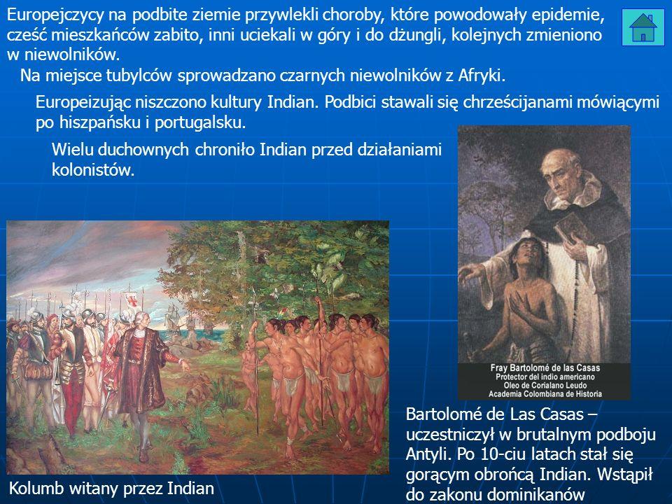 Europejczycy na podbite ziemie przywlekli choroby, które powodowały epidemie, cześć mieszkańców zabito, inni uciekali w góry i do dżungli, kolejnych zmieniono w niewolników.