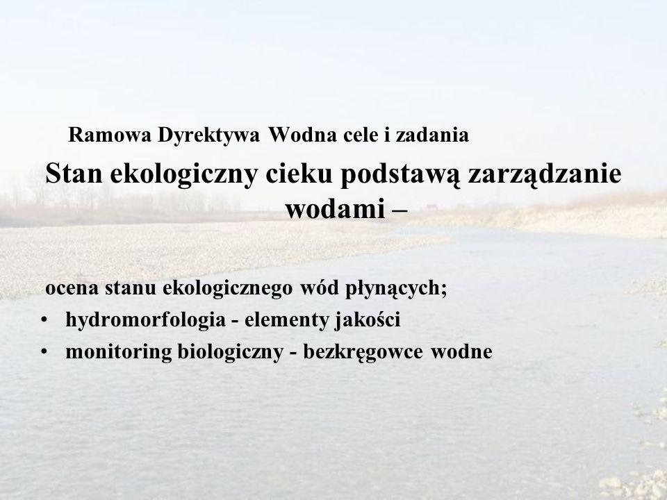 Stan ekologiczny cieku podstawą zarządzanie wodami –