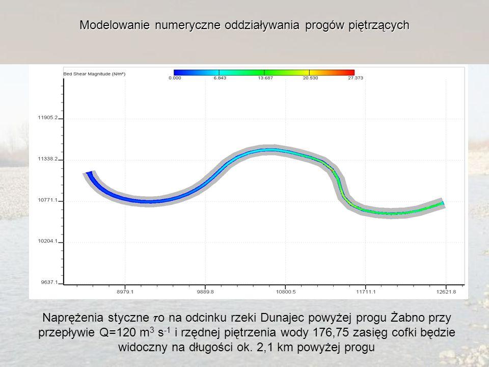 Modelowanie numeryczne oddziaływania progów piętrzących