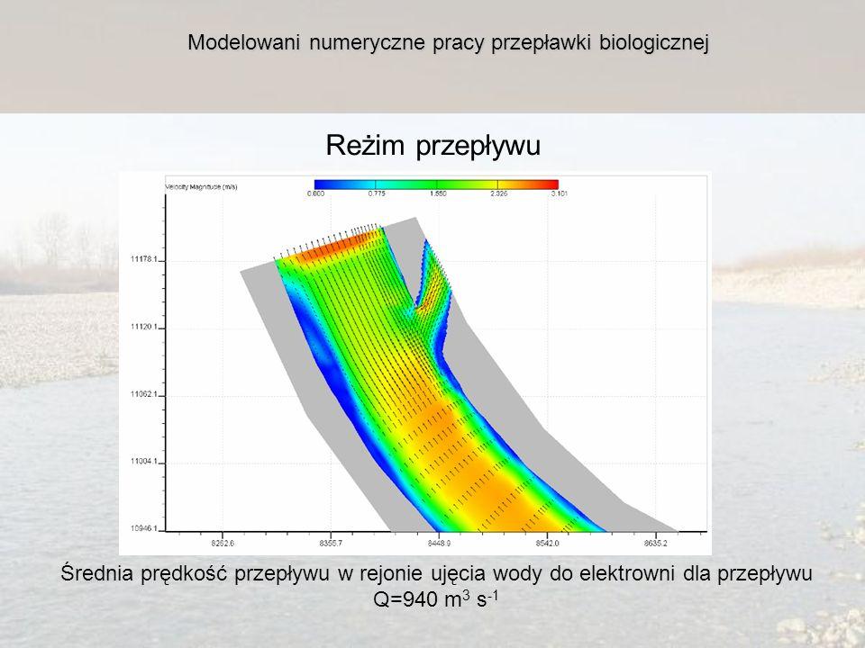 Reżim przepływu Modelowani numeryczne pracy przepławki biologicznej