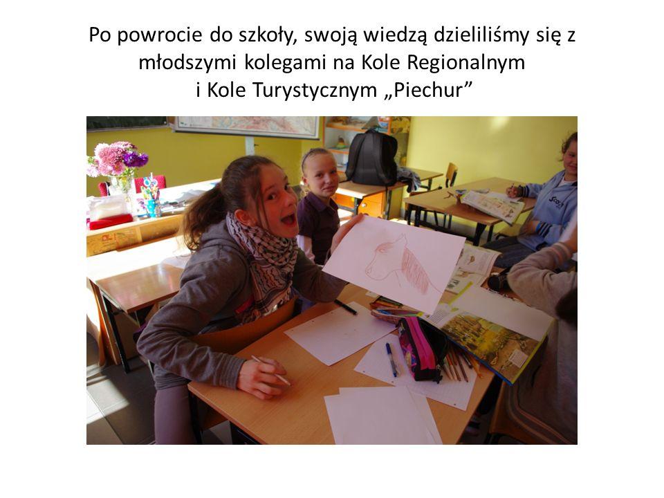 """Po powrocie do szkoły, swoją wiedzą dzieliliśmy się z młodszymi kolegami na Kole Regionalnym i Kole Turystycznym """"Piechur"""