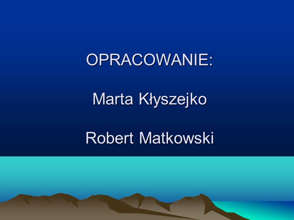 OPRACOWANIE: Marta Kłyszejko Robert Matkowski