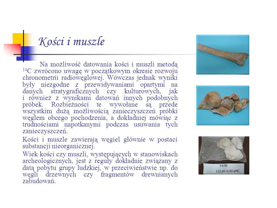 Kości i muszle