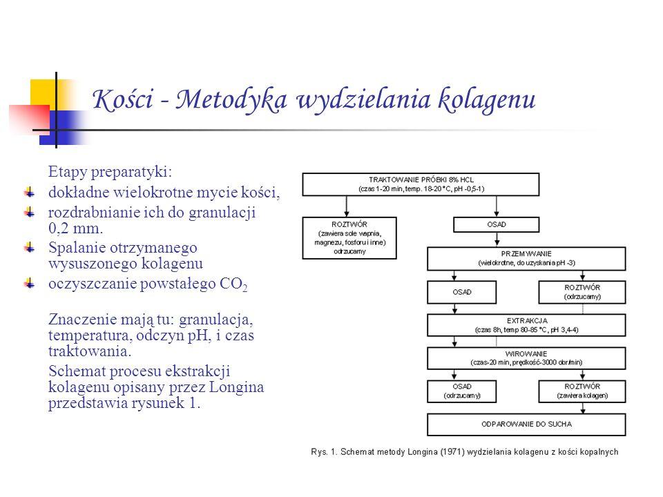 Kości - Metodyka wydzielania kolagenu