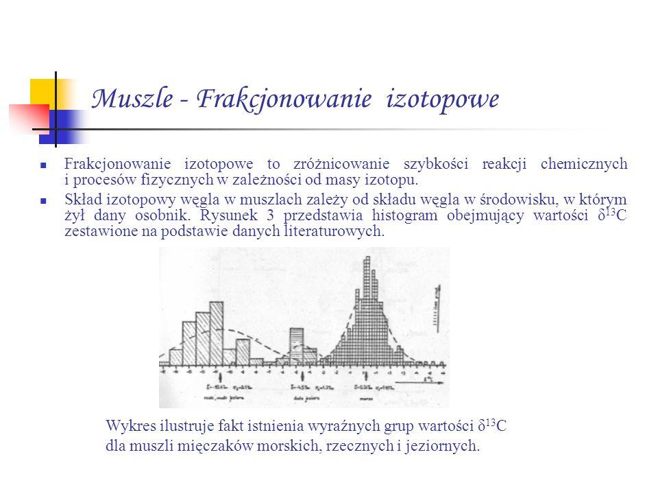 Muszle - Frakcjonowanie izotopowe