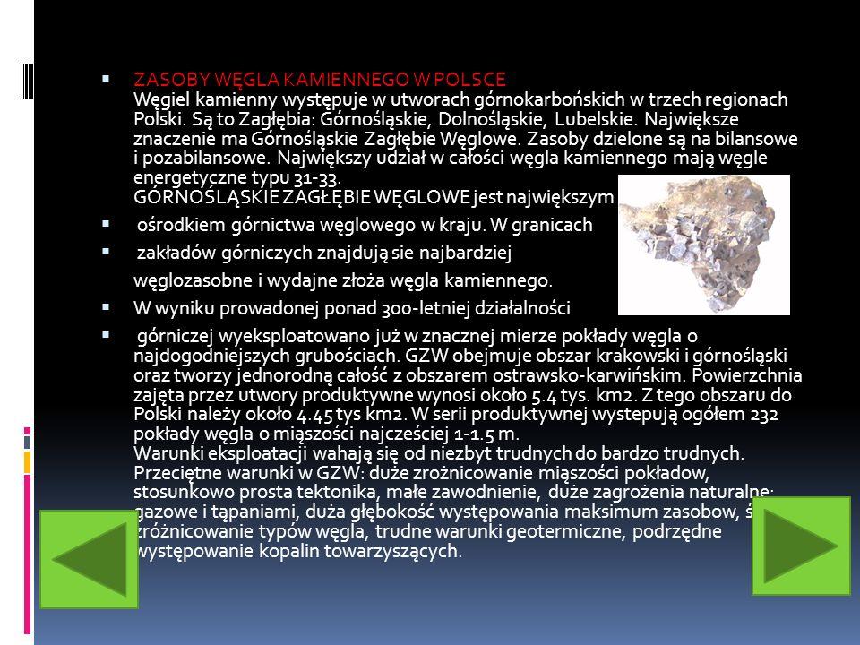 ZASOBY WĘGLA KAMIENNEGO W POLSCE Węgiel kamienny występuje w utworach górnokarbońskich w trzech regionach Polski. Są to Zagłębia: Górnośląskie, Dolnośląskie, Lubelskie. Największe znaczenie ma Górnośląskie Zagłębie Węglowe. Zasoby dzielone są na bilansowe i pozabilansowe. Największy udział w całości węgla kamiennego mają węgle energetyczne typu 31-33. GÓRNOŚLĄSKIE ZAGŁĘBIE WĘGLOWE jest największym