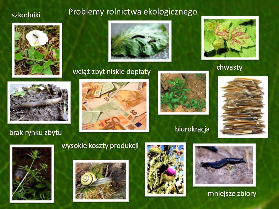 Problemy rolnictwa ekologicznego