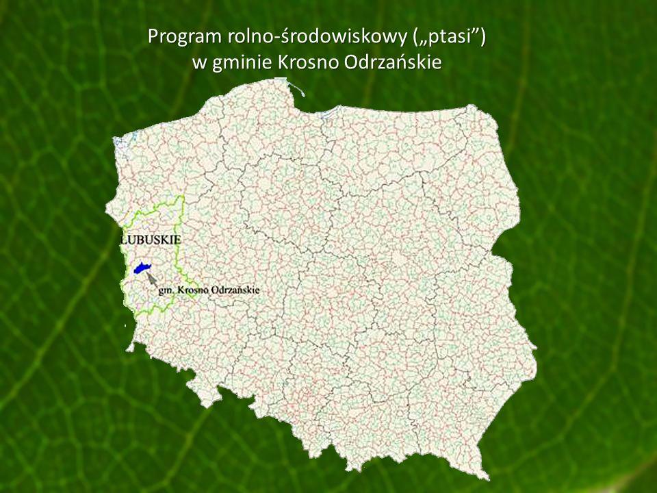 """Program rolno-środowiskowy (""""ptasi ) w gminie Krosno Odrzańskie"""