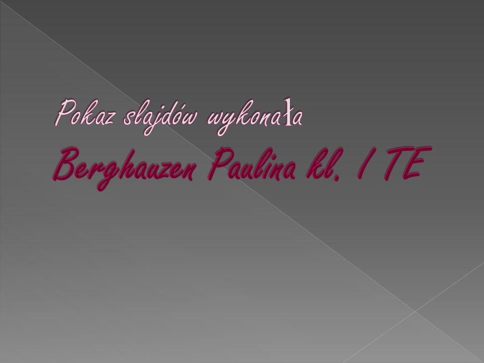 Pokaz slajdów wykonała Berghauzen Paulina kl. I TE
