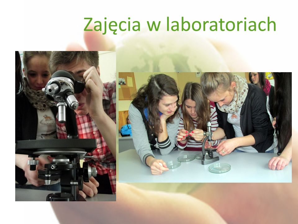 Zajęcia w laboratoriach