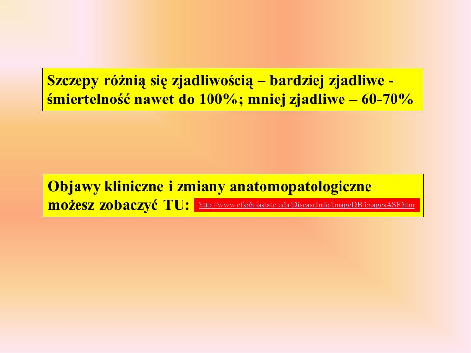 Objawy kliniczne i zmiany anatomopatologiczne możesz zobaczyć TU: