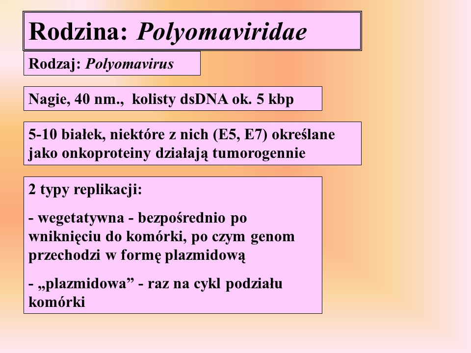 Rodzina: Polyomaviridae