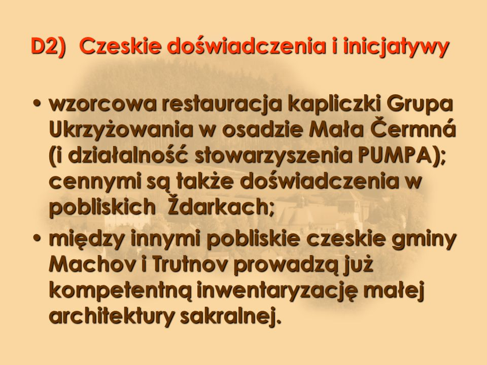 D2) Czeskie doświadczenia i inicjatywy