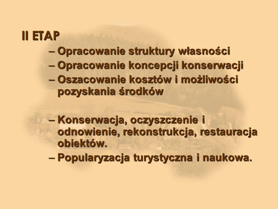 II ETAP Opracowanie struktury własności