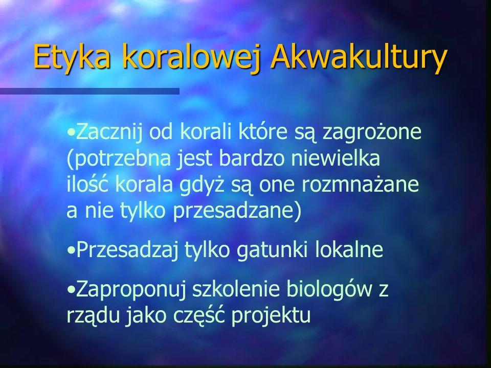 Etyka koralowej Akwakultury