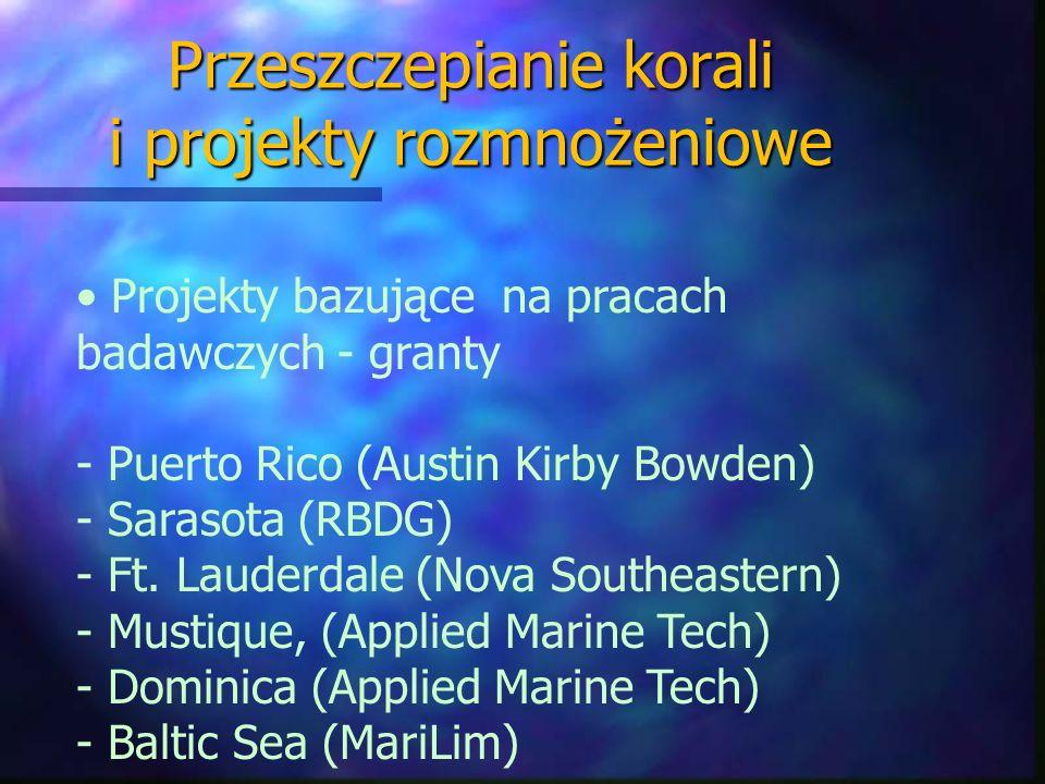 Przeszczepianie korali i projekty rozmnożeniowe