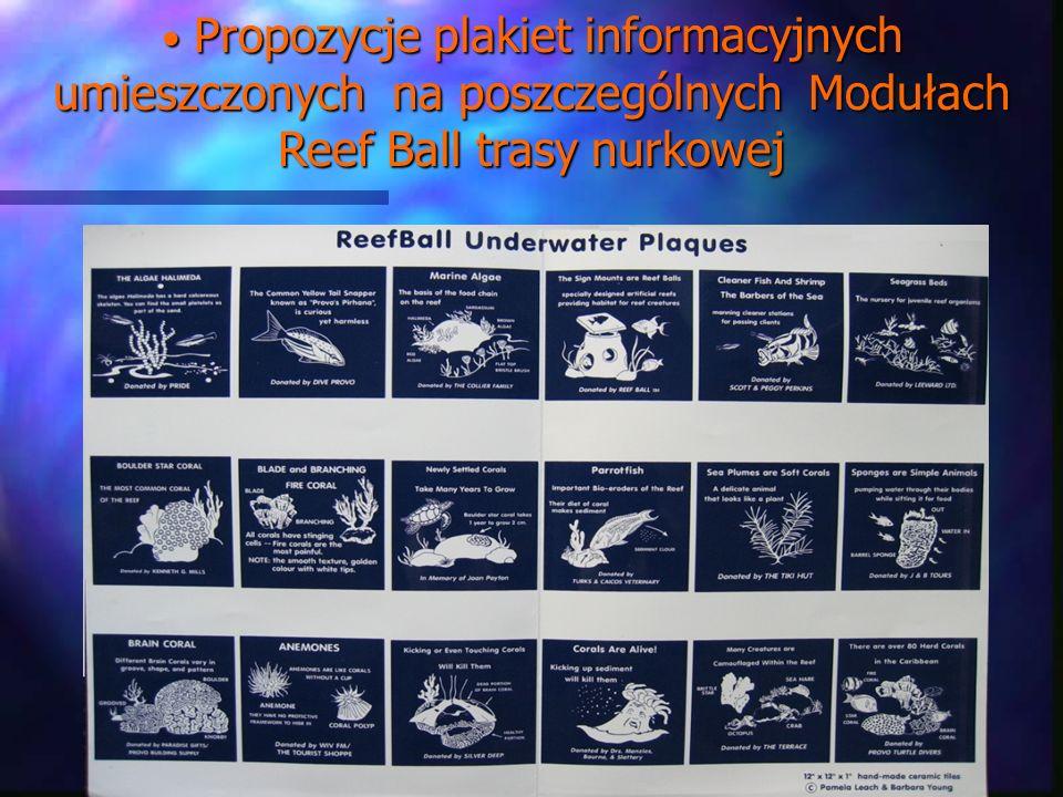 Propozycje plakiet informacyjnych umieszczonych na poszczególnych Modułach Reef Ball trasy nurkowej