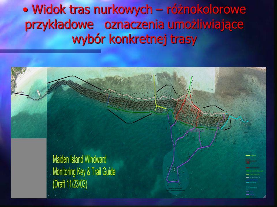 Widok tras nurkowych – różnokolorowe przykładowe oznaczenia umożliwiające wybór konkretnej trasy