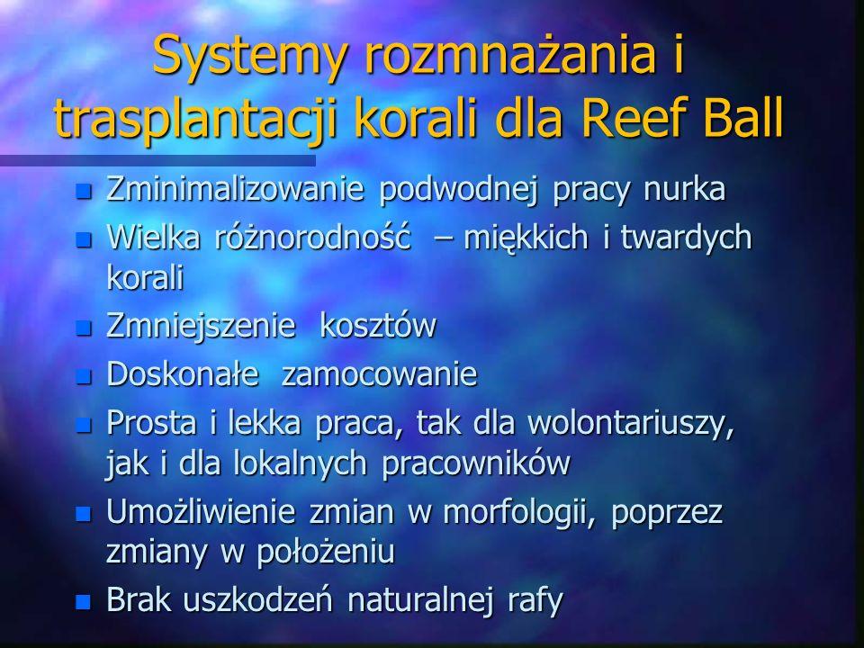 Systemy rozmnażania i trasplantacji korali dla Reef Ball