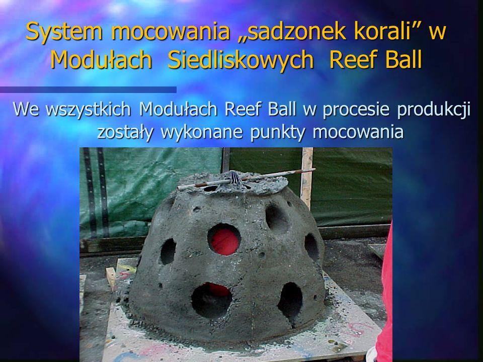 """System mocowania """"sadzonek korali w Modułach Siedliskowych Reef Ball"""
