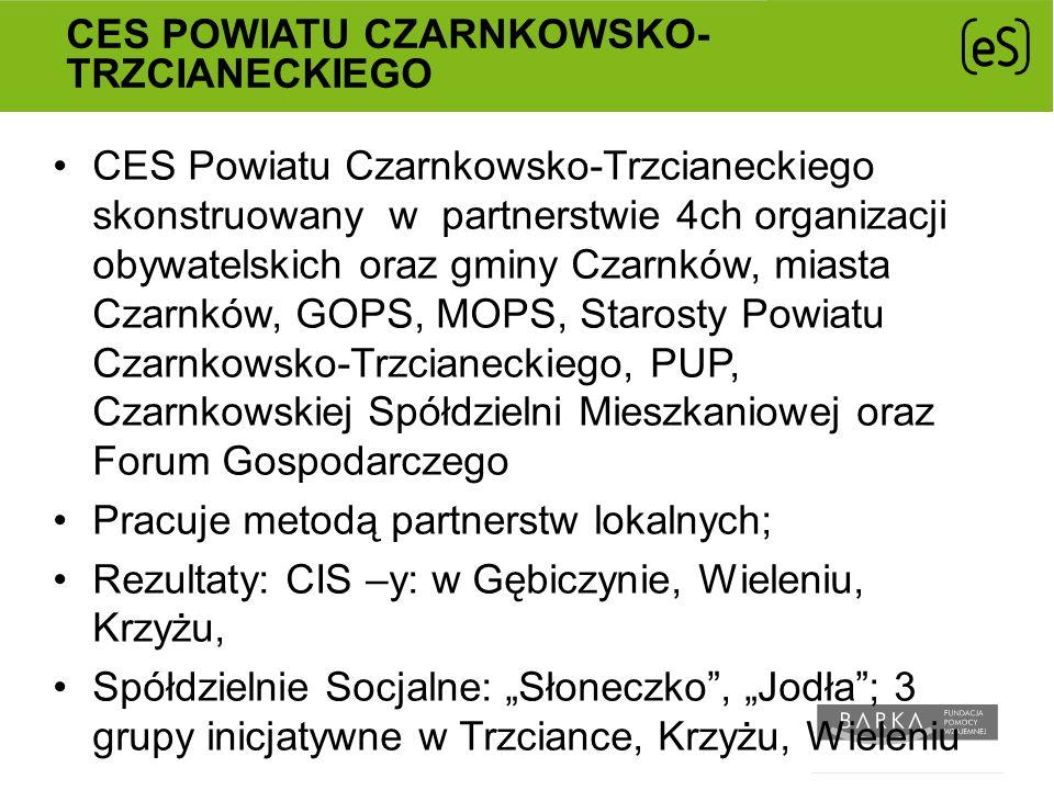 CES powiatu Czarnkowsko-Trzcianeckiego
