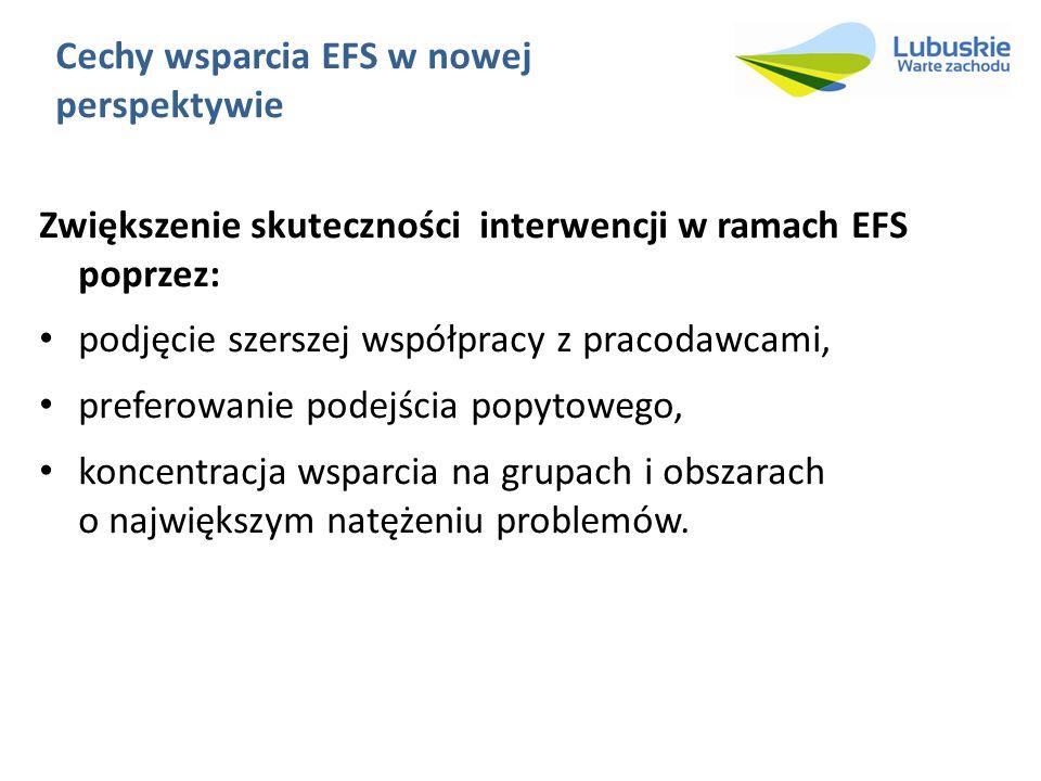 Cechy wsparcia EFS w nowej perspektywie