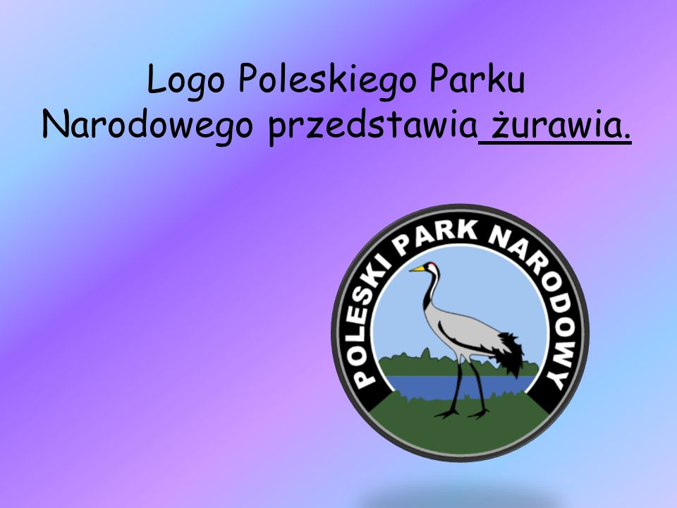 Logo Poleskiego Parku Narodowego przedstawia żurawia.