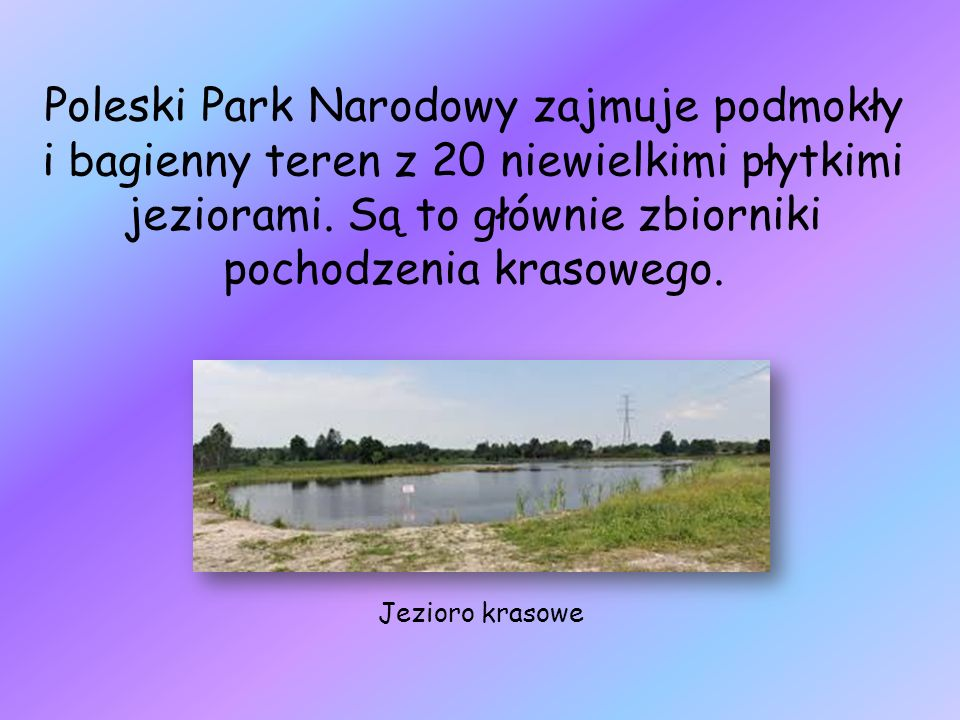 Poleski Park Narodowy zajmuje podmokły i bagienny teren z 20 niewielkimi płytkimi jeziorami. Są to głównie zbiorniki pochodzenia krasowego.