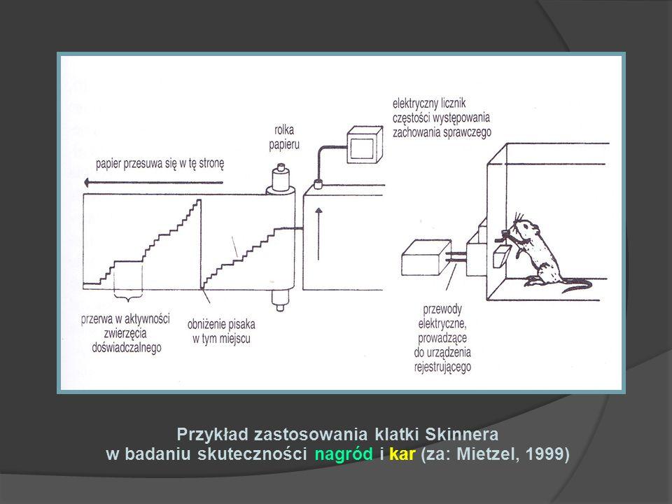 Przykład zastosowania klatki Skinnera