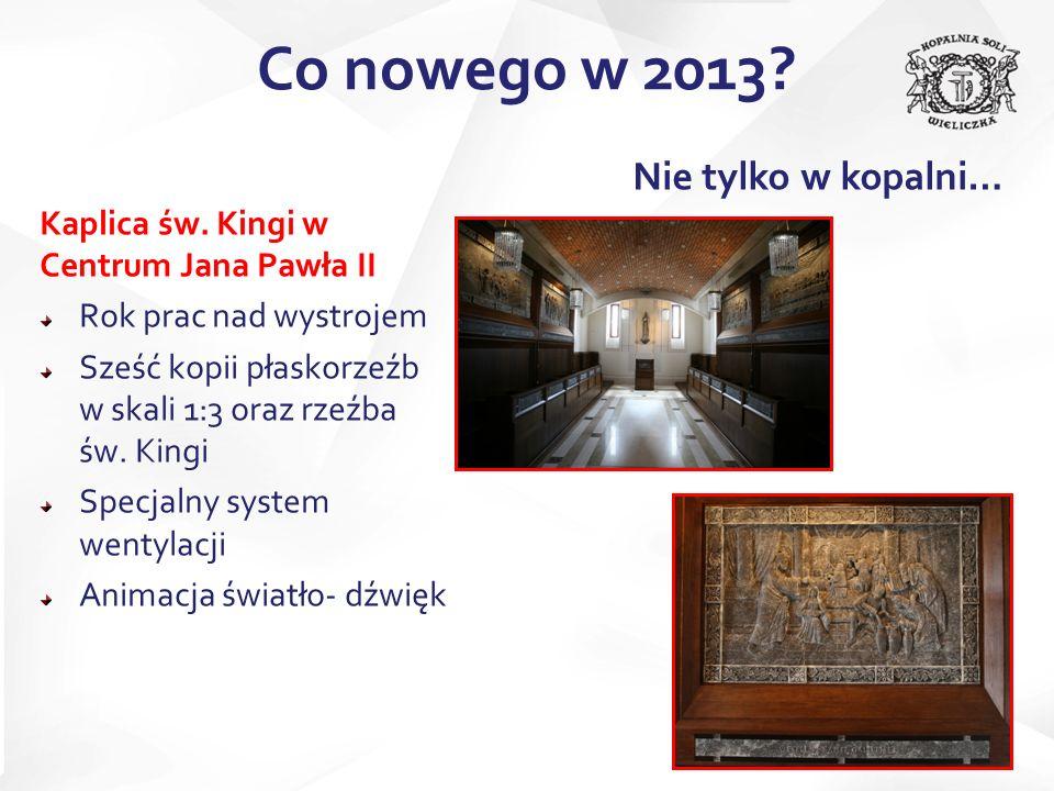 Co nowego w 2013 Nie tylko w kopalni…
