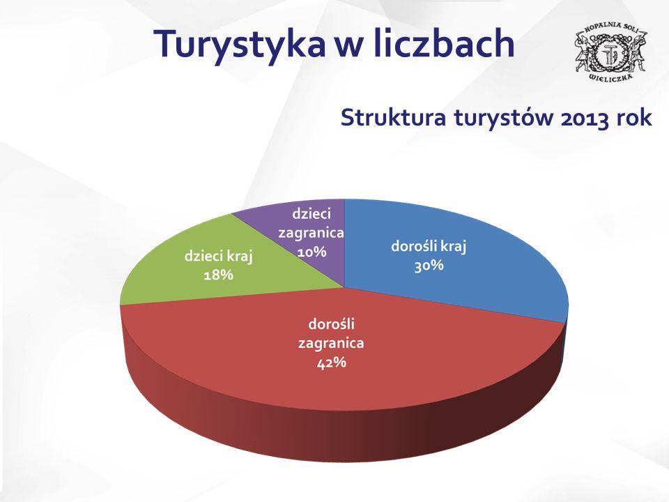 Struktura turystów 2013 rok