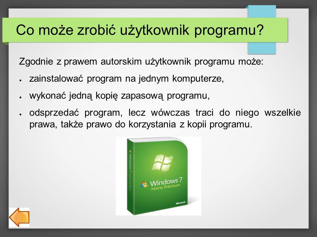 Co może zrobić użytkownik programu