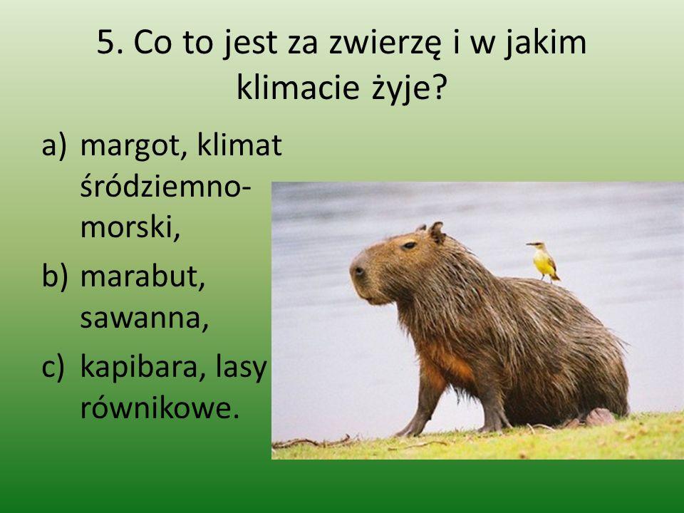 5. Co to jest za zwierzę i w jakim klimacie żyje