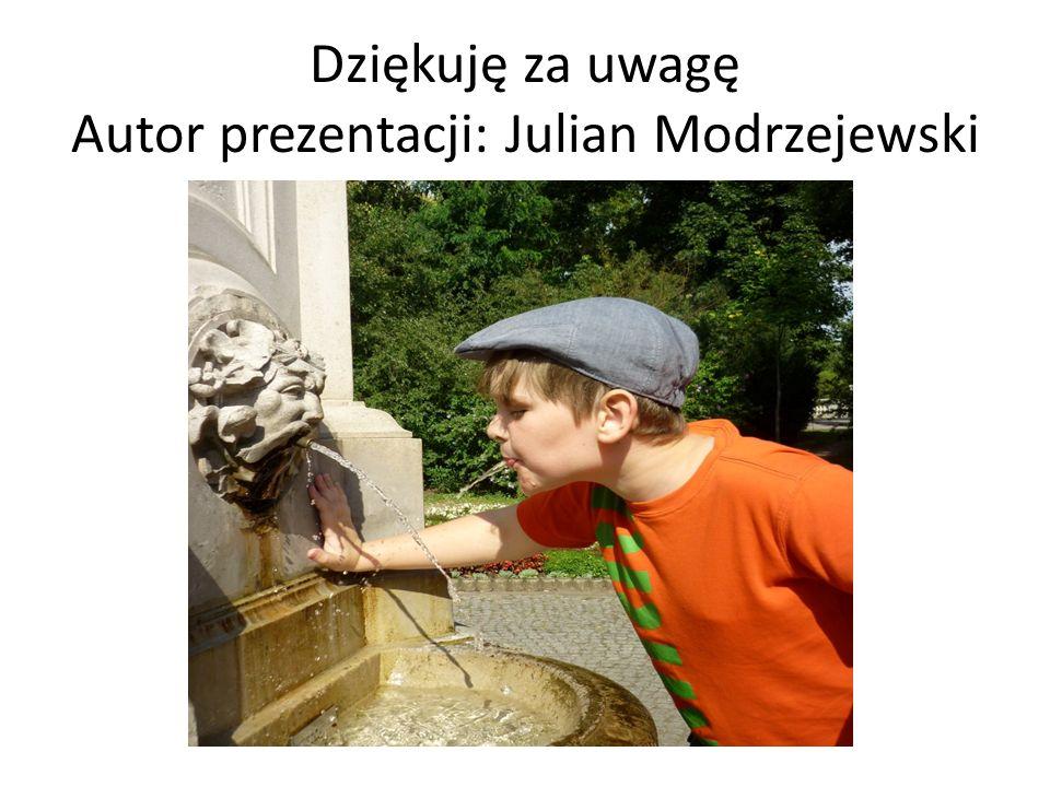 Dziękuję za uwagę Autor prezentacji: Julian Modrzejewski