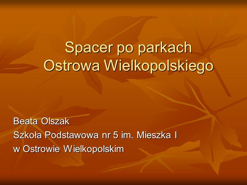 Spacer po parkach Ostrowa Wielkopolskiego