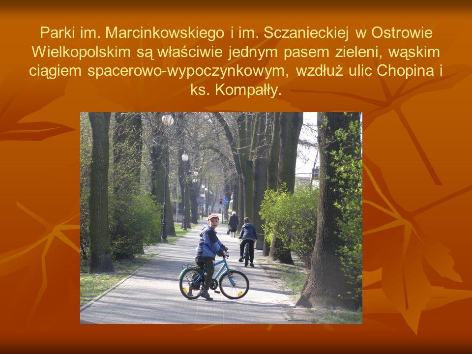 Parki im. Marcinkowskiego i im