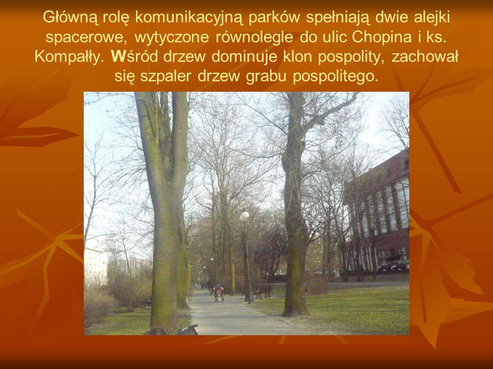 Główną rolę komunikacyjną parków spełniają dwie alejki spacerowe, wytyczone równolegle do ulic Chopina i ks.