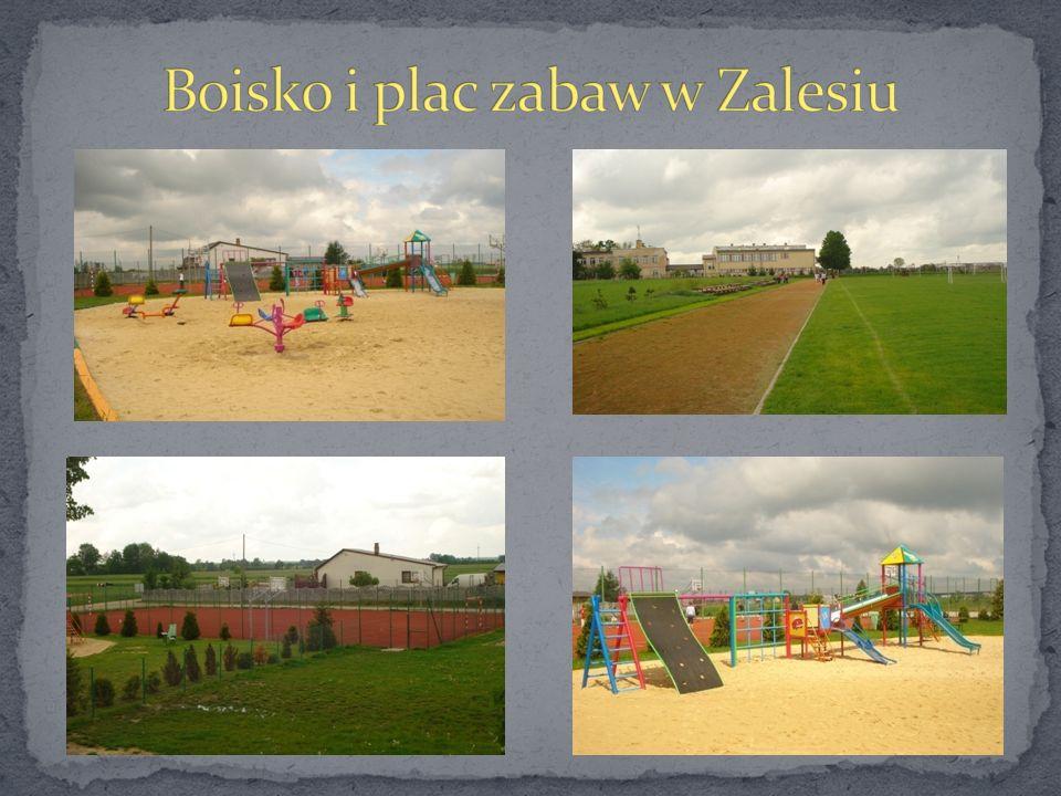 Boisko i plac zabaw w Zalesiu