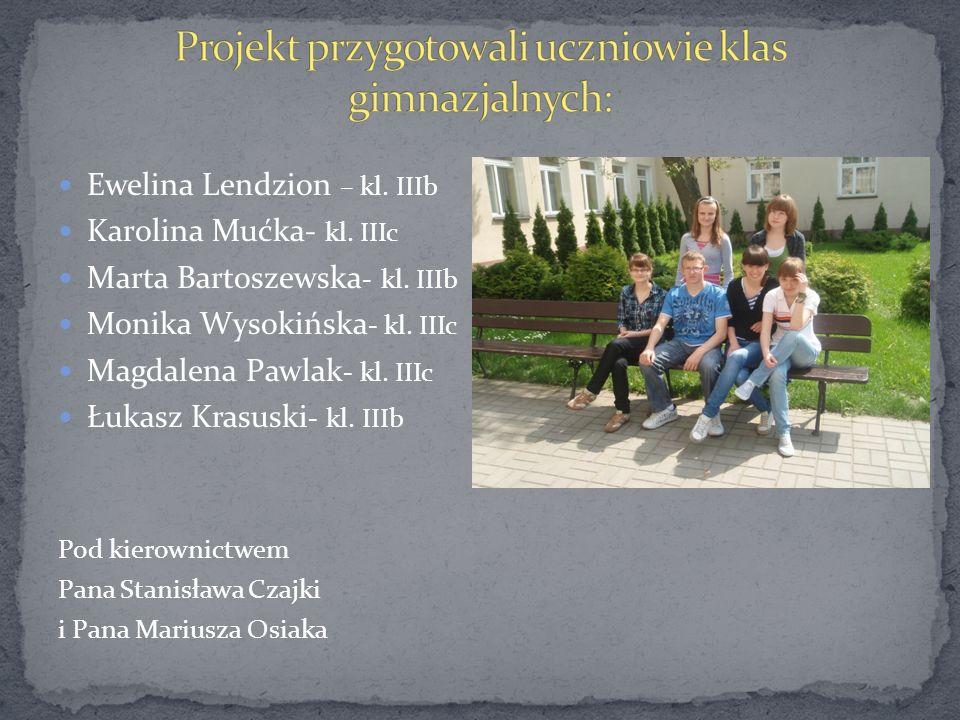 Projekt przygotowali uczniowie klas gimnazjalnych: