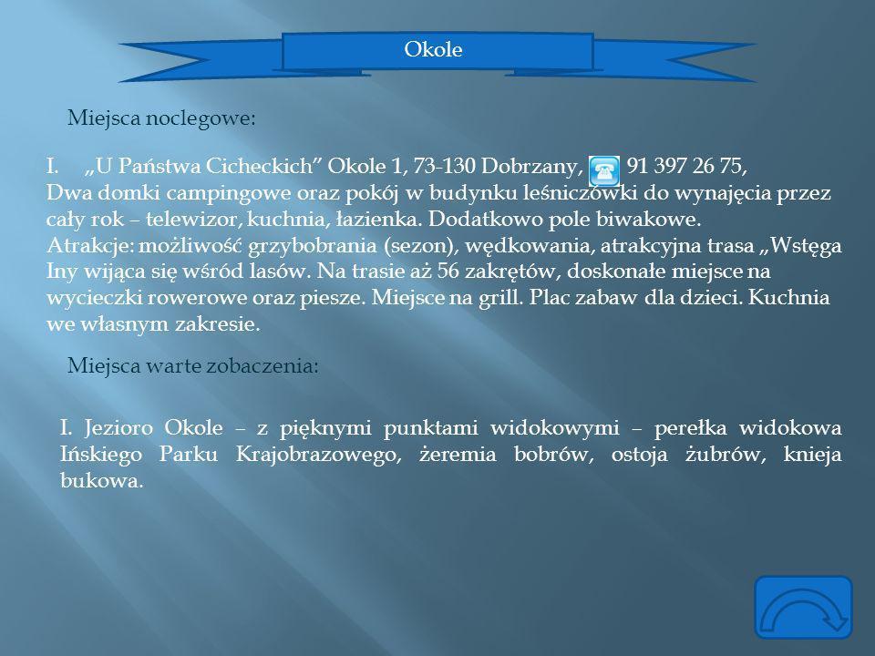 """Okole Miejsca noclegowe: """"U Państwa Cicheckich Okole 1, 73-130 Dobrzany, 91 397 26 75,"""