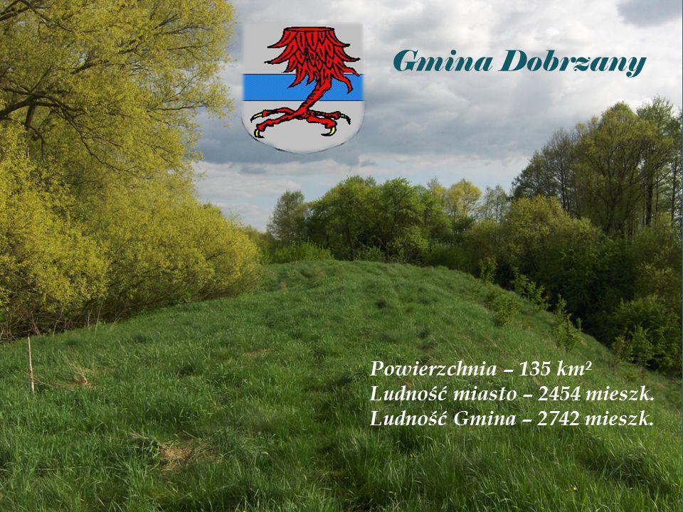 Gmina Dobrzany Powierzchnia – 135 km² Ludność miasto – 2454 mieszk.