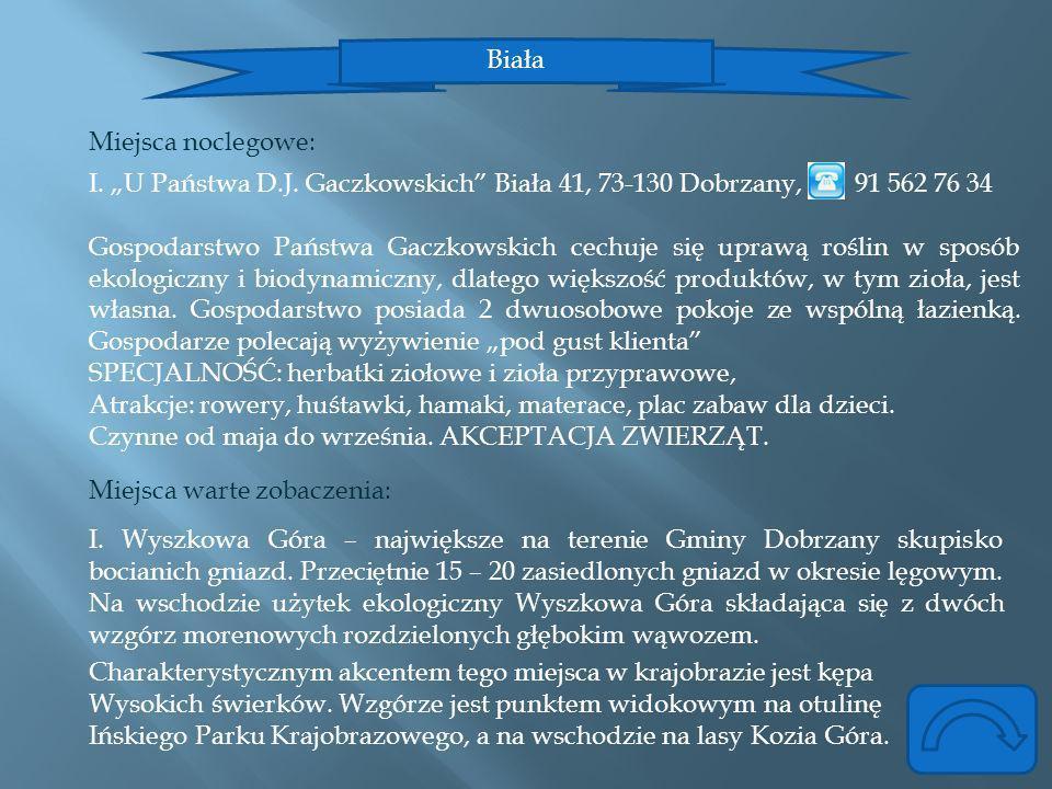 """Biała Miejsca noclegowe: I. """"U Państwa D.J. Gaczkowskich Biała 41, 73-130 Dobrzany, 91 562 76 34."""