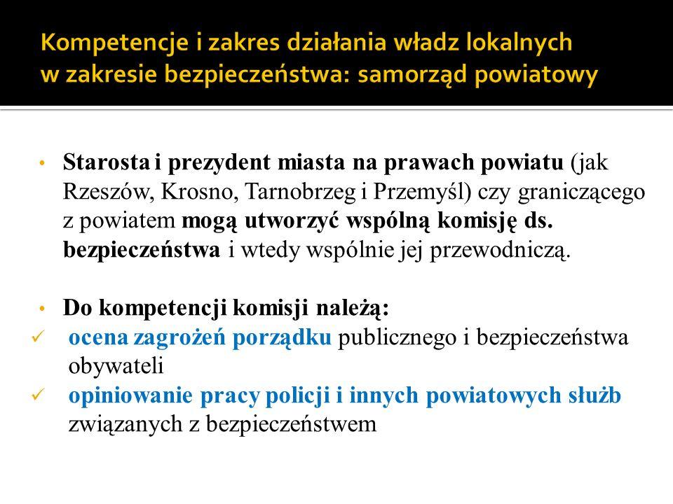 Kompetencje i zakres działania władz lokalnych w zakresie bezpieczeństwa: samorząd powiatowy