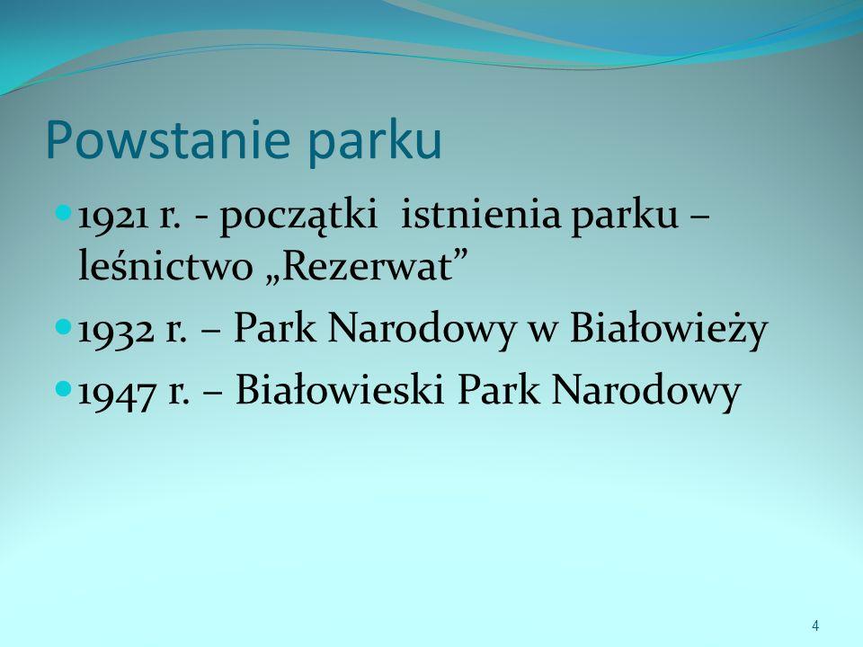 """Powstanie parku 1921 r. - początki istnienia parku – leśnictwo """"Rezerwat 1932 r. – Park Narodowy w Białowieży."""