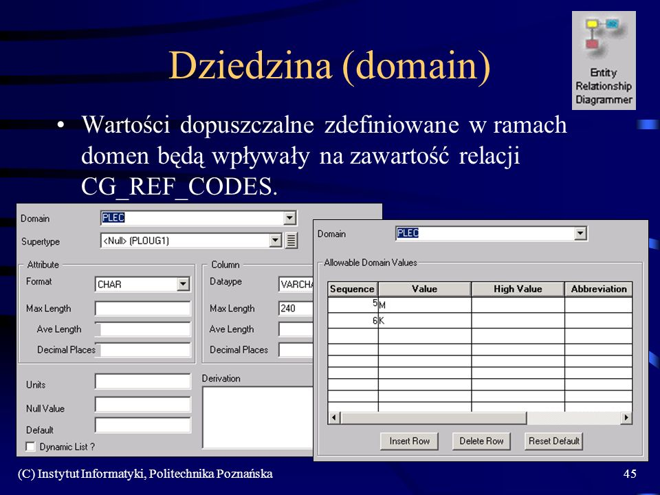 Dziedzina (domain) Wartości dopuszczalne zdefiniowane w ramach domen będą wpływały na zawartość relacji CG_REF_CODES.