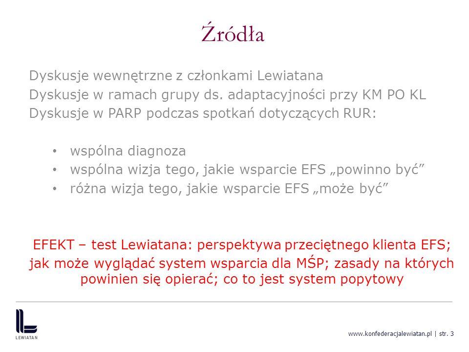 EFEKT – test Lewiatana: perspektywa przeciętnego klienta EFS;