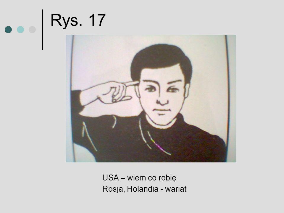 Rys. 17 USA – wiem co robię Rosja, Holandia - wariat