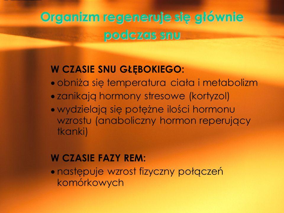 Organizm regeneruje się głównie podczas snu